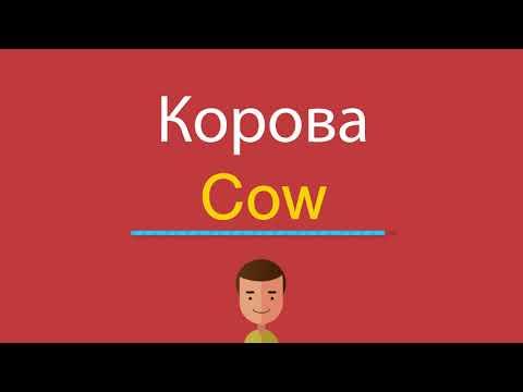 Как переводится с английского на русский слово cow