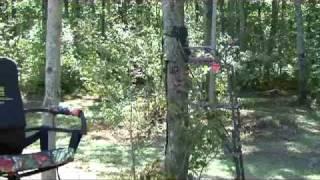 BHPTV - Rivers Edge Treestands