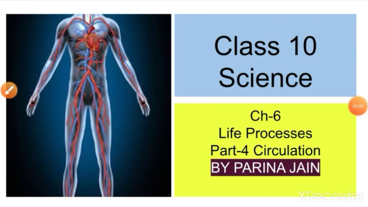 Class 10th, Science (Biology) Ch-6 Life Processes Part-4 ...