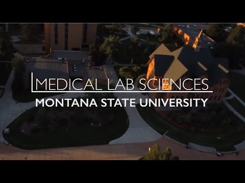 Medical Lab Sciences | Montana State University