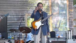 Billy Boy Arnold- T.B. Blues/Decoration Day- Chicago Blues Festival 2014