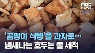 '곰팡이 식빵'을 과자로…냄새나는 호두는 물 세척 (2…