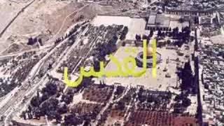 arabs in israel عرب اسرائيل