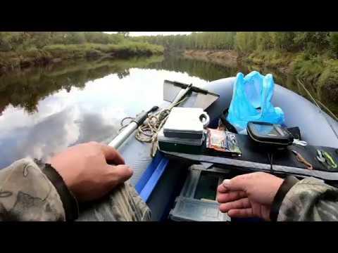 Двухдневная рыбалка на реке Пижма. День второй.