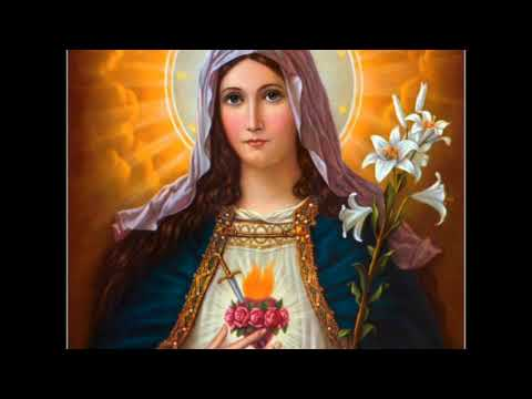 November 8 Prophecy Virgin Mary MESSAGE