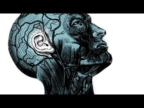 Your brain on improv - Charles Limb - YouTube