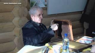 Занятие №2. Курсы В.Г. Кашковского.