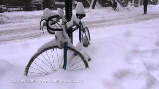 Historic Blizzard in NY/NJ - Jan 23 2016