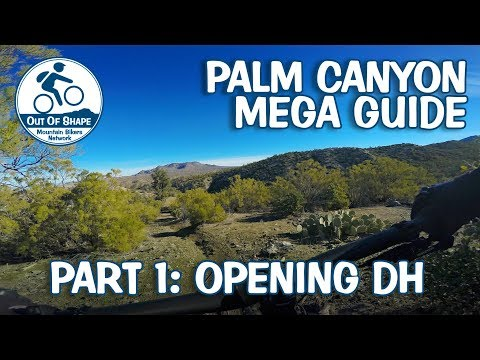 Palm Canyon Epic Mega Guide | Part 1: Opening DH