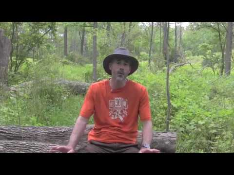 e820079d355e6 Tilley Hiker s Hat - Tested + Reviewed - YouTube