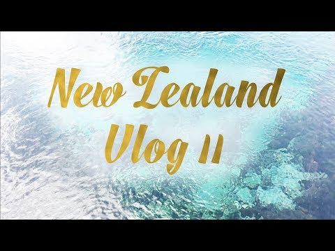 New Zealand Vlog | Holly Dunn Design