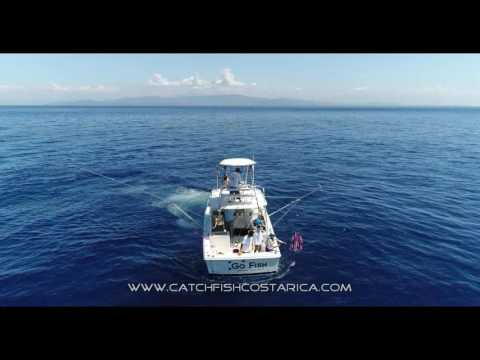 Offshore Fishing with Pelagic Pursuits CR on the Go Fish!