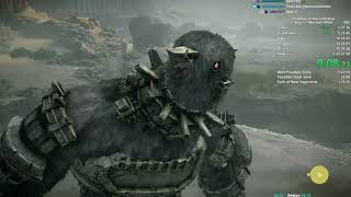 Shadow of the Colossus Speedrun in 1:25:47 (PS4/WR)