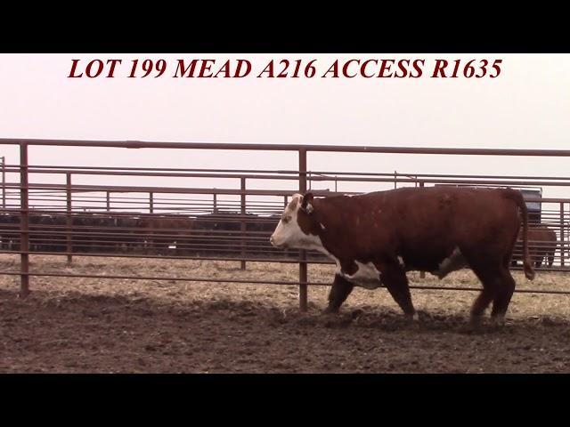 Mead Farms Lot 199