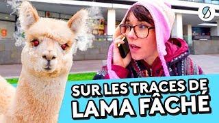 LAMA FACHÉ, LE FAKE A PLEIN YOUTUBE!  - WTFAKE #18