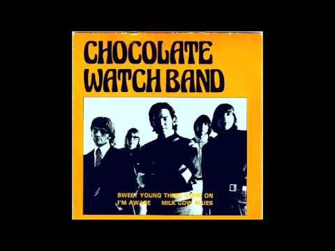 "the chocolate watchband - ""don"