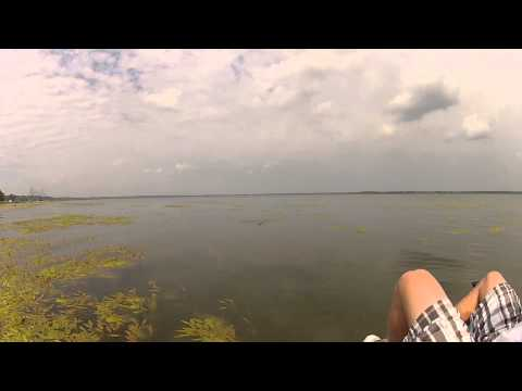 bass fishing at Emiquon Havana ill