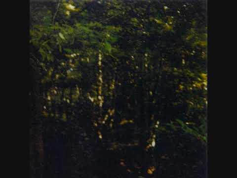 Leoš Janáček - On An Overgrown Path