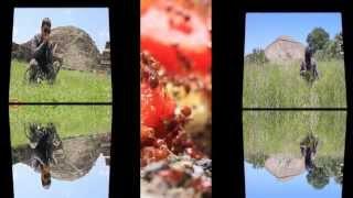 HYBRID FREQUENCY Vs, PORDIOZERO (Live in TEOTIHUACAN PYRAMIDS 2013)