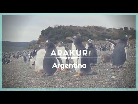 celestielle-#154-arakur,-ushuaia,-tierra-del-fuego-island-(patagonia),-argentina
