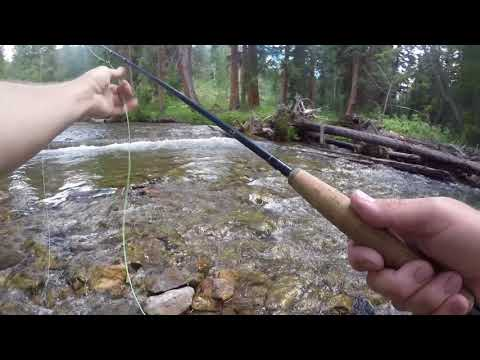 Fly Fishing Brush Creek And The East River, Gunnison Colorado