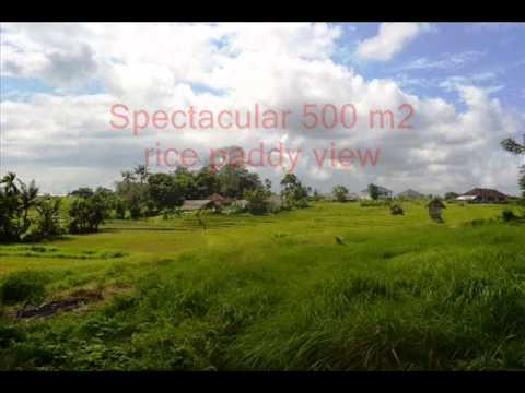 Property for sale in Bali, amazing land for sale in Canggu Bali -- TJCG116