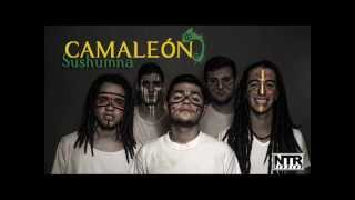 Camaleón -  6.Infection ft Scream in Rage (Sushumna)