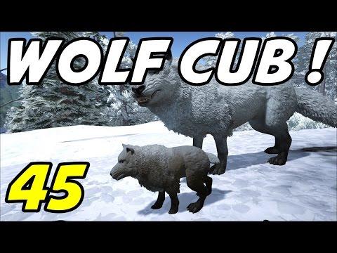 "ARK Survival Evolved E45 ""Direwolf Breeding!"" (Gameplay / Playthrough / 1080p)"