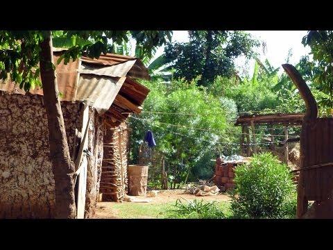 Tanzania 1 - Living In Africa