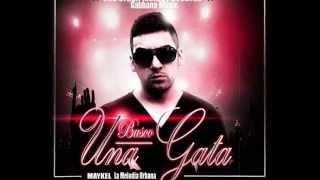 Busco Una Gata Prod By Gabbana Music & Urban Melody Records