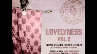 19- Effective Wonder riddim mix (mixtape - Lovelyness vol.5)