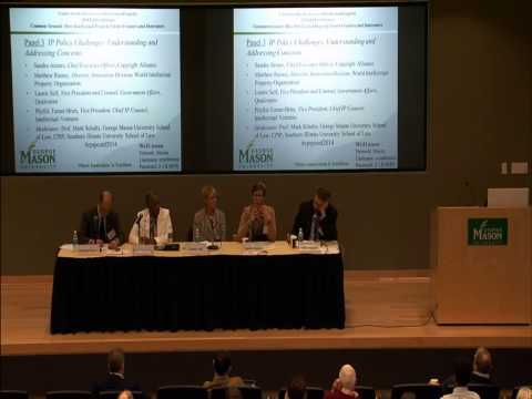 CPIP 2014 Fall Conference - Panel 3 - IP Policy Challenges