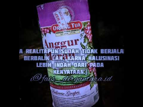 Quotes Anggur Merah Youtube