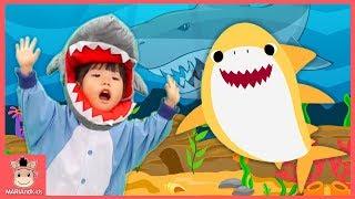 아기 상어 가족 인기 동요 Baby shark Nursery Rhymes