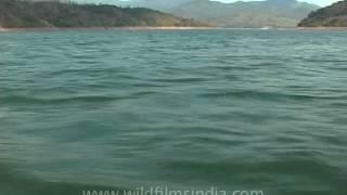 Doyang river in Wokha district, Nagaland