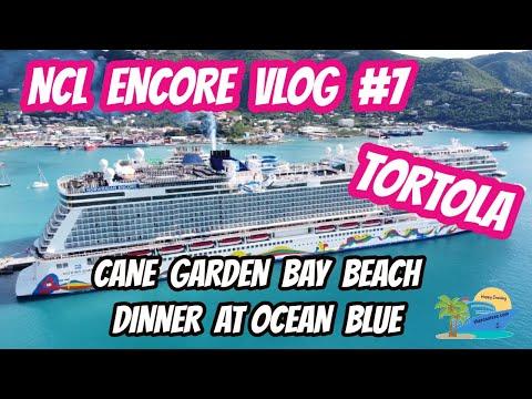 NCL ENCORE VLOG #7 | TORTOLA | CANE GARDEN BAY BEACH | OCEAN BLUE