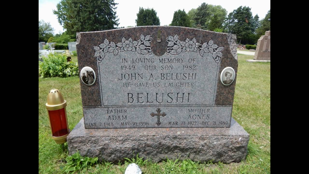 john belushi cenotaph    or is it  elmwood cemetery