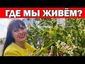 ГДЕ МЫ ЖИВЁМ - КЕПЕЗ АНТАЛИЯ / Последний день свободно гуляем   - новые ограничения /Весна в Анталии