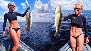 СУДАК ДУРЕЕТ ОТ МОРКОВКИ И КЛЮЕТ НА КАЖДОМ З Рыбалка на судака 2021 Ловля судака летом на джиг