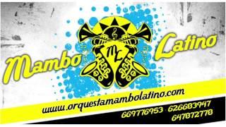 Mueve Tu Cuerpo - Orquesta Mambo Latino (verano 2015)
