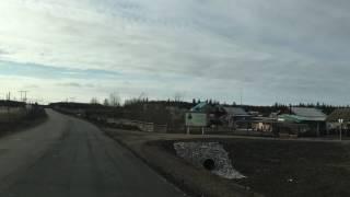 Якутская корова-навигатор