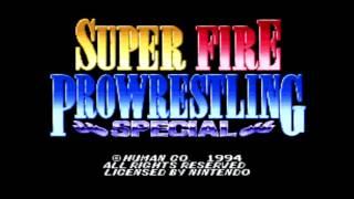 Fire Pro Wrestling History