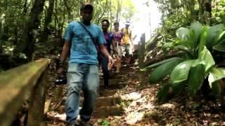 Grand Etang Hike 3