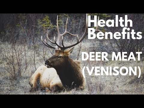 Here are 5 Health Benefits of Deer meat (Venison) you probably did not know about S5*E2