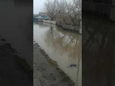 наводнение в Ясной Поляне 2016 год 1 апреля