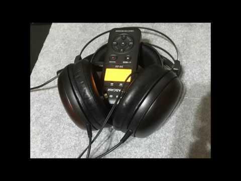 ATH-W5000再生音