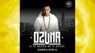 Ozuna & D OZi Ft  Brujo Master - Si No Te Quiere (Mambo Remix) | New Brothers