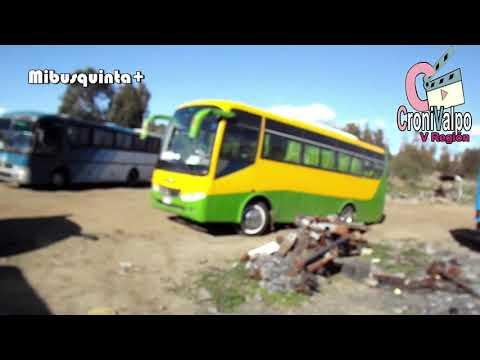 Buses Nuevos y Antiguos en Ritoque Región de Valparaiso
