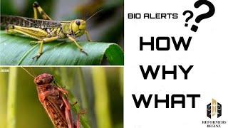 Bio-Alerts  || LOCUST || Episode - I  ||  Reformers Beginz ||