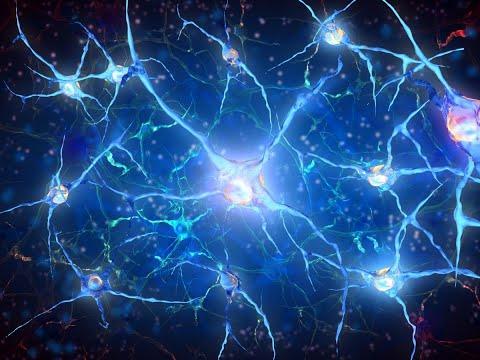 أخبار تكنولوجيا - باحثون يعتزمون ارسال خلايا أعصاب الانسان إلى الفضاء  - 12:23-2017 / 12 / 9